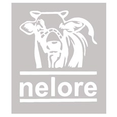 Adesivo Nelore - Rodeo West 14015