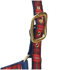 Cabresto Escocês Azul Grande - Kauana 16912