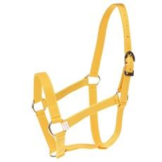 Cabresto para Cavalo de Nylon Amarelo Kauana 27315