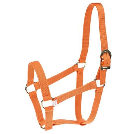 Cabresto para Cavalo de Nylon Laranja Kauana 27313