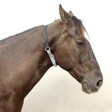 Colar Aerofagia para Cavalos Weaver Leather 20928