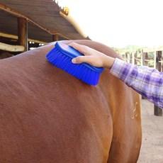 Escova para Cavalo Importada de Nylon - Instep 16427