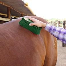 Escova para Cavalo Importada de Nylon - Instep 16430